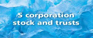 S-Corporation Stocks