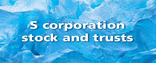 Only Certain Trusts Can Own S-Corporation Stock